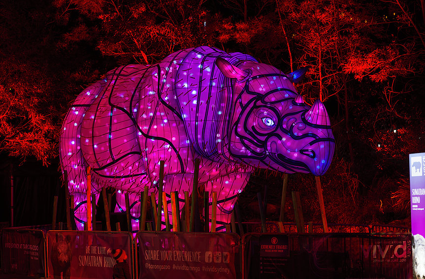 Vivid Sydney 2016 <br/> Ample Projects